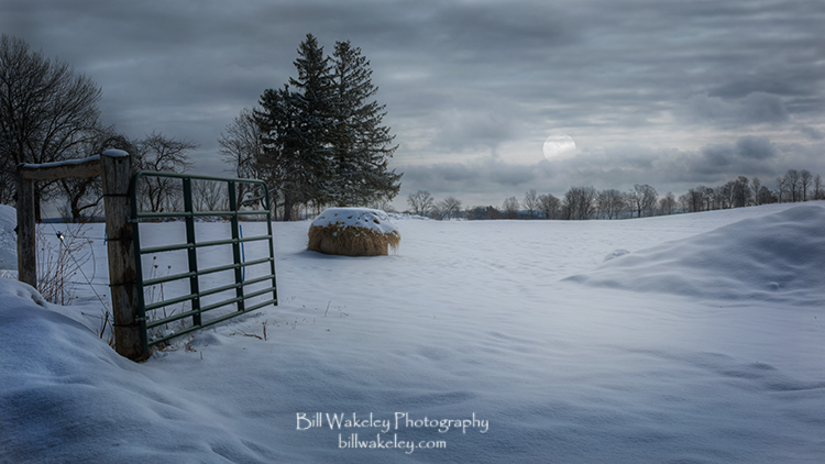 Moonlit Winter Pasture
